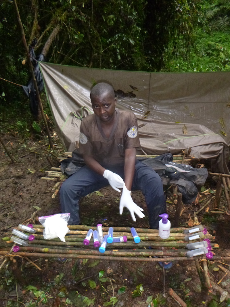 A great ape survey team member wearing white gloves organizes plastic containers on a bench made from sticks.